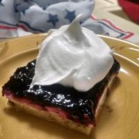 Blueberry Dessert 3