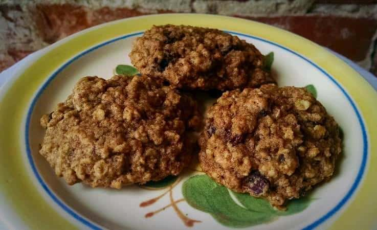 Oatmeal Raisin Cookie enhanced